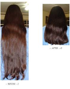 The Transition: Before and After