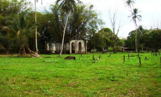 National Heritage Site: remnants of Mt. Pleasant Village, Tucker Valley, Trinidad