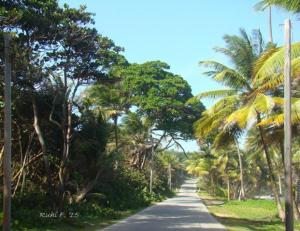 Driving up the East Coast of Trinidad
